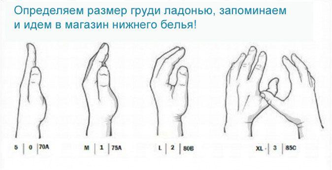 инструкция по замеру груди для парней