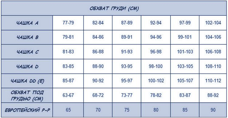 таблица обхвата груди