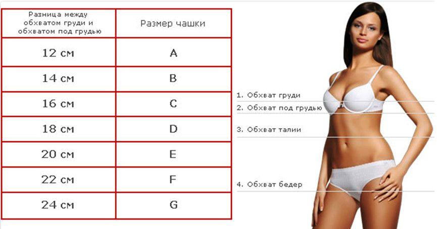 таблица для определения размера груди